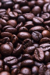 Coffee Bean Holic Brown Food Soft iPhone 4s wallpaper