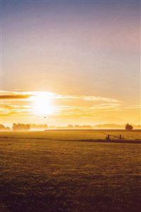 Sunny Morning Farm Peace Nature Flare iPhone 4s wallpaper