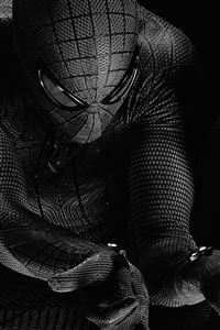 Spiderman Hero Dark Bw Art Illustration iPhone 4s wallpaper