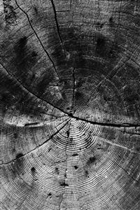 Wood Line Texture Old Dark Pattern Bw iPhone 4s wallpaper