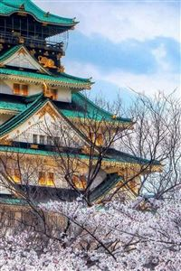 Cherry Blossoms Temple Architecture iPhone 4s wallpaper