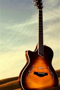 Guitar Utility Wither Field iPhone 4s wallpaper