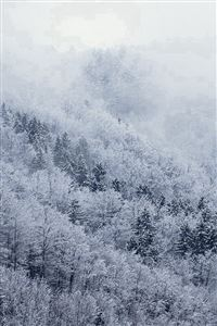 Mountain Wood Winter Christmas White iPhone 4s wallpaper