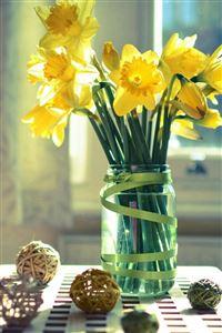 Morning Warm Sunshine Bright Desk Flowers Vase iPhone 4s wallpaper