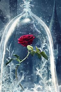 Beauty And The Beast Castle Icy Bell Rose Snowflake iPhone 4s wallpaper