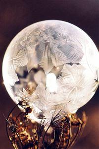 Winter Cold Frozen Bubble Bokeh Nature Dark iPhone 4s wallpaper