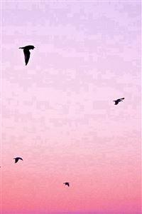 Sky Bird Pink Red Sunset Nature iPhone 4s wallpaper