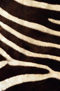 Zebra Texture iPhone 4s wallpaper