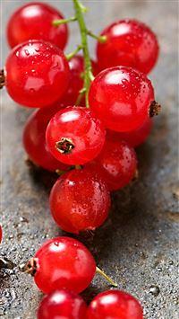 Red Grape Macro iPhone 8 wallpaper