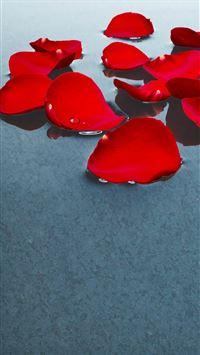Flower Petal Art iPhone 8 wallpaper