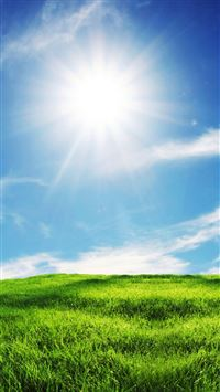 Sunshine and Grass iPhone 8 wallpaper