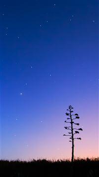 Pure Night Sky iPhone 8 wallpaper