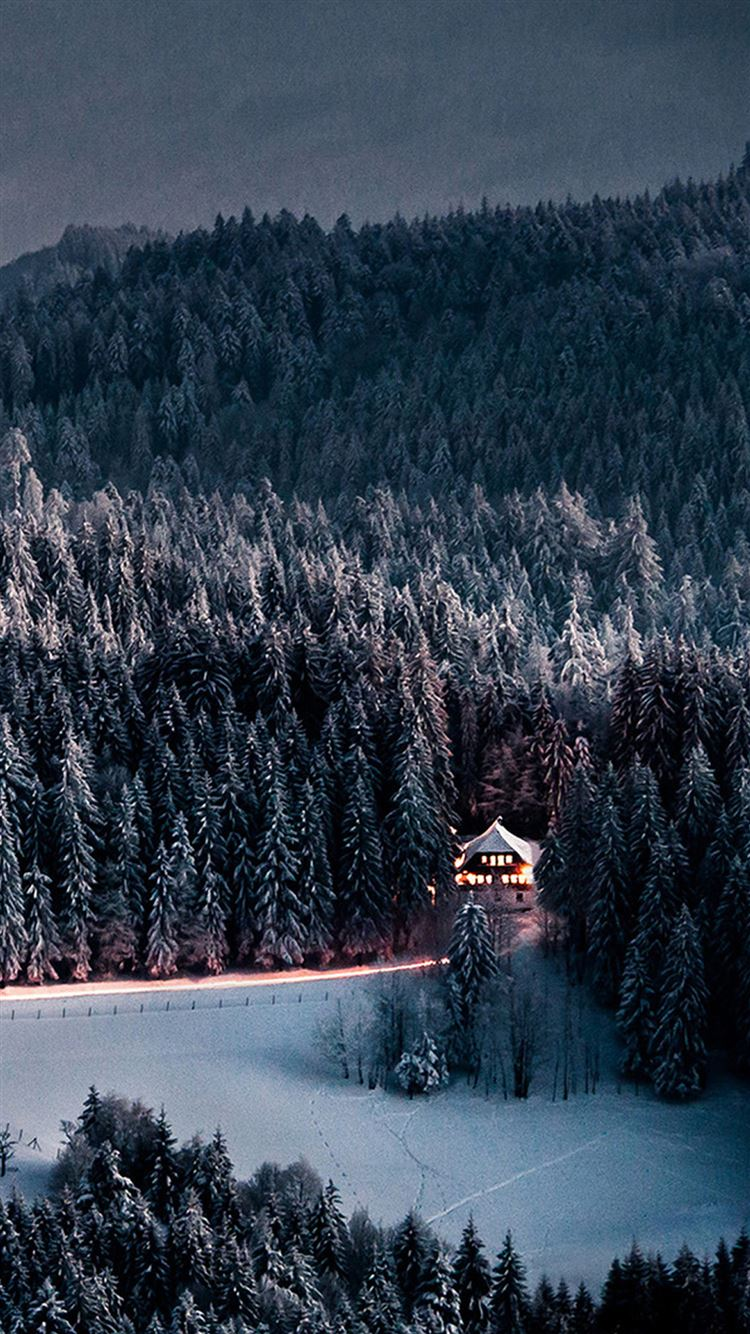 Winter Snow Forest Chalet Retreat IPhone 8 Wallpaper