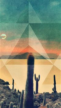 Desert Drought Cactus Rhombus Cover Art iPhone 8 wallpaper