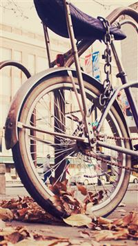 Vintage Hipster Bike Chained iPhone 8 wallpaper