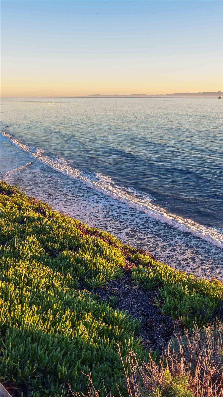 Peace Nature Wood Sea Ocean Nature iPhone 8 wallpaper