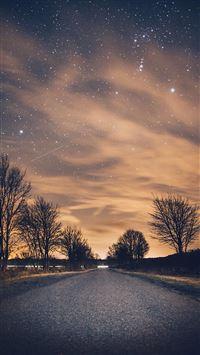 Nature Night Shiny Road Endless Tree Roadside iPhone 6(s)~8(s) wallpaper
