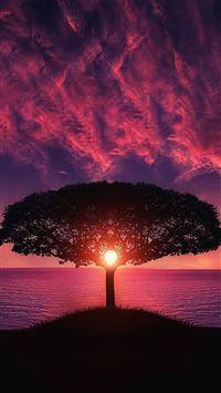 Sea Tree Purple Sky Nature IPhone 8 Wallpaper