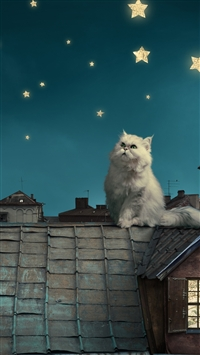 White Persian Cat Kitten Fairy Tale Fantasy Roofs Houses Sky Night Stars Moon iPhone 8 wallpaper