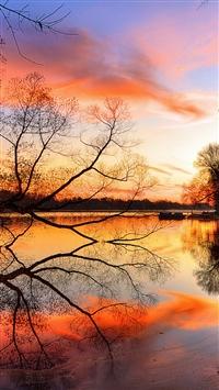 Lake Sunset Trees Landscape Beach Art Night Reflection iPhone 8 wallpaper