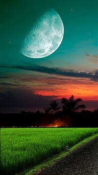 Moon And Sky Grass iPhone 8 wallpaper
