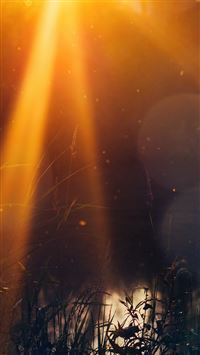 God Light Loves You Nature Flower Lake Flare iPhone 8 wallpaper