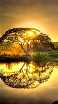 Sunset pond trees landscape iPhone 6(s)~8(s) wallpaper