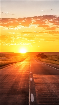 Road sunset marking grass iPhone 8 wallpaper