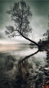 Mysterious-sunrise iPhone 8 wallpaper