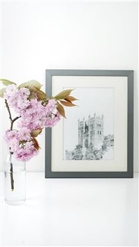 cherry blossom iPhone 6(s)~8(s) wallpaper