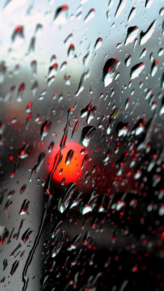 Fresh Rain Drops IPhone Se Wallpaper