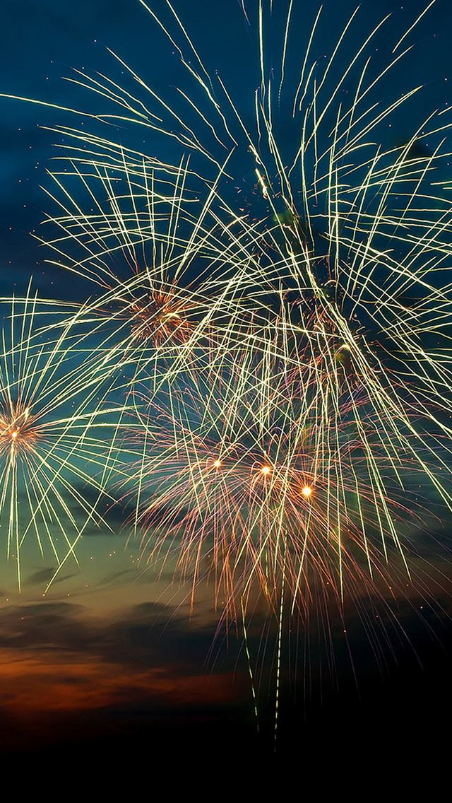 Happy New Year 2015 Fireworks Sunset IPhone Se Wallpaper Download