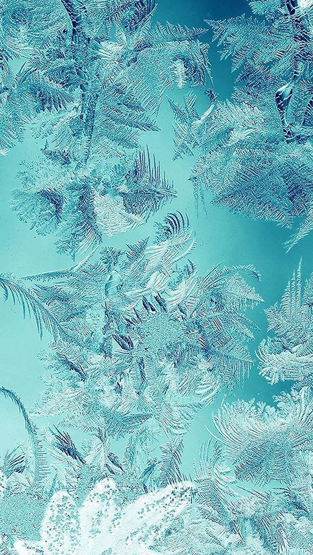 Ice Pattern Green Snow Nauture Christmas IPhone Se Wallpaper