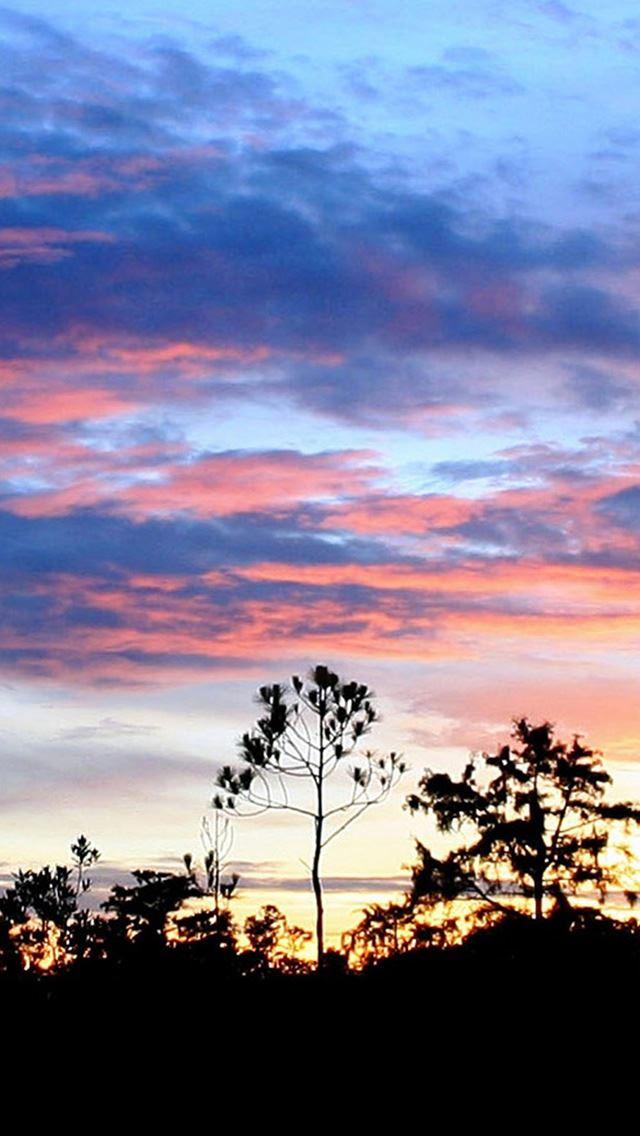 Nature Sunset Cloud Skyscape Woodland Landscape iPhone se wallpaper