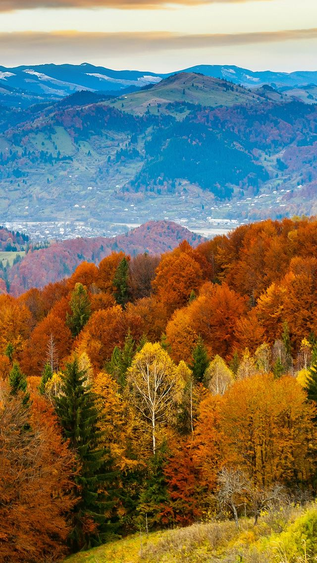 Fall Mountain Fun Red Orange Tree Nature IPhone Se Wallpaper