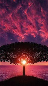 Sea Tree Purple Sky Nature iPhone se wallpaper