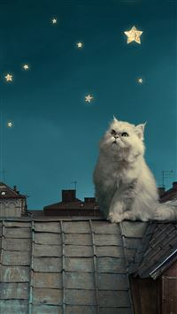 White Persian Cat Kitten Fairy Tale Fantasy Roofs Houses Sky Night Stars Moon iPhone se wallpaper