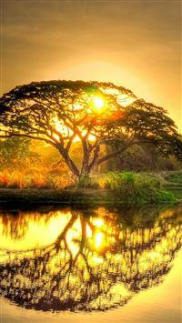 Sunset Pond Trees Landscape iPhone se wallpaper