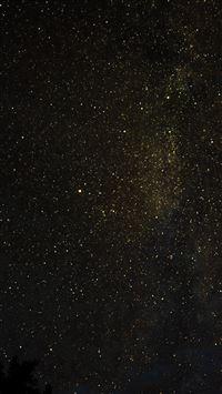 Night Sky Milkyway Tree Wood Nature Gold IPhone Se Wallpaper