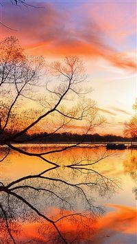 Lake Sunset Trees Landscape Beach Art Night Reflection iPhone se wallpaper