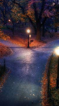 Park Autumn City Lights Pavement Trails Leaves iPhone se wallpaper