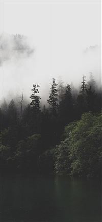 Mountain Forest Lake Misty iPhone se wallpaper