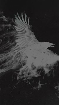 White Bird Smoke Art Illust iPhone se wallpaper