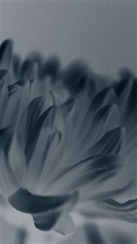 Silk Flower Blue Mutant Nature iPhone se wallpaper