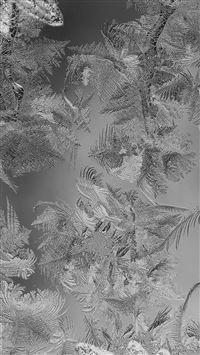 Ice pattern black snow iPhone se wallpaper