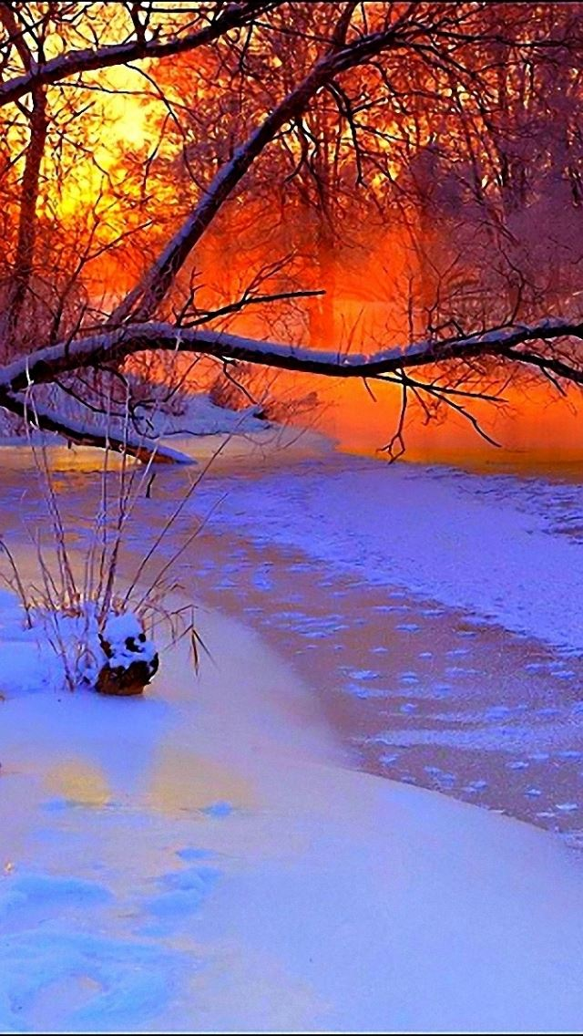 Winter sunset evening  iPhone se wallpaper