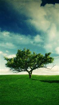 Summer Landscape iPhone se wallpaper