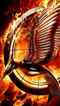 Catching Fire  iPhone wallpaper