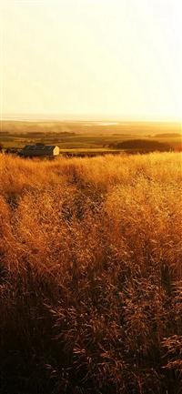 The Gladiator Farm Nature iPhone X wallpaper