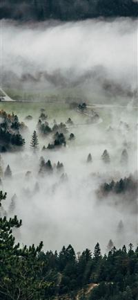 Fog Mountain Dawn Nature Cloud iPhone X wallpaper
